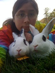 me and the bunnies