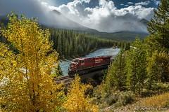 Canadian Pacific Railway (robertopastor) Tags: alberta amrica canada canadianrockiesmountain canad fuji montaasrocosas robertopastor viaje xt2 xf1655mm canadian pacific tren train