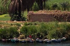 TOP_Egipte_Vide_48 copia (vide23) Tags: egipto egypt nilo