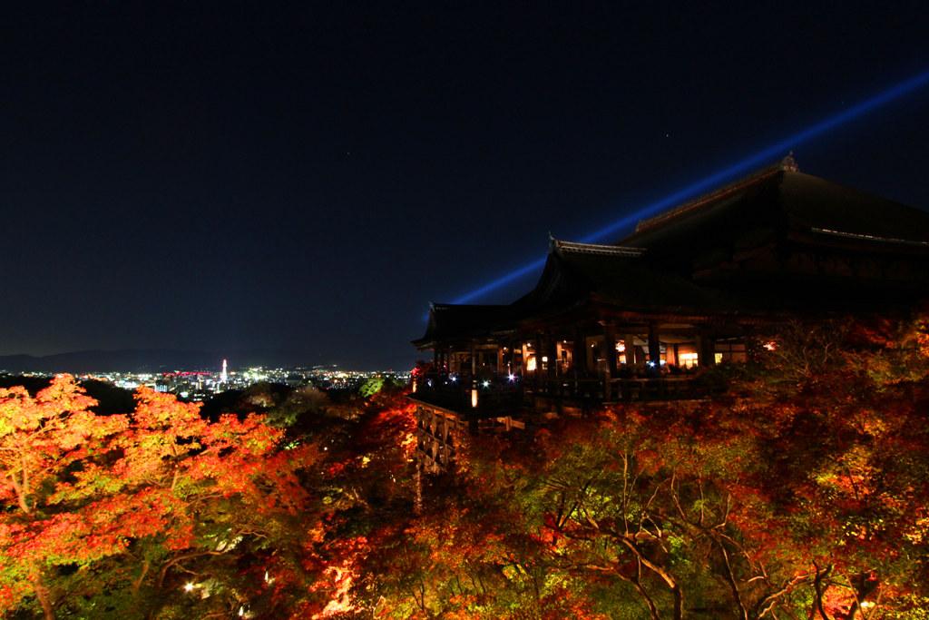 Kiyomizu-dera Illumination 2010  (9)