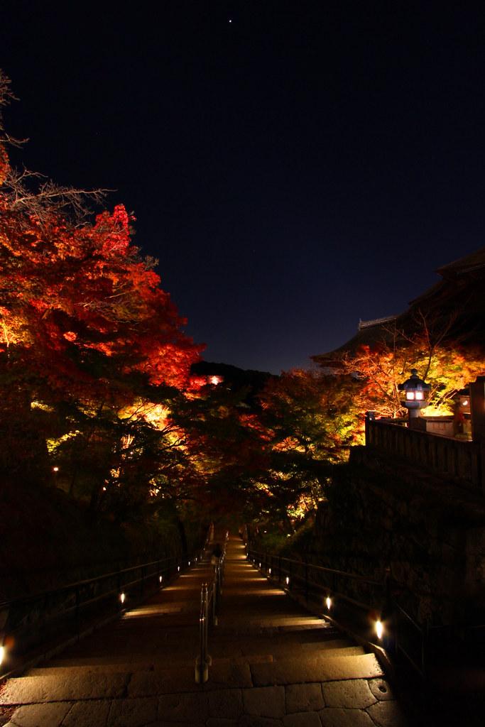 Kiyomizu-dera Illumination 2010  (7)