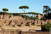 canopy (wmliu) Tags: italy rome roma europe italia canopy romanforum wmliu