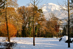 Neige  tous les tages ~ Snow on every floor (Michele*mp) Tags: park winter mountain snow france montagne alpes europe december hiver valley neige parc dcembre frenchalps valle belledonne meylan isre dauphin grsivaudan michelemp fleursetpaysages parcdubachais llitedespaysages