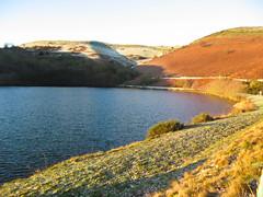 Frozen Mechs at Dawn Ride