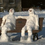 Snow Couple in Botanics