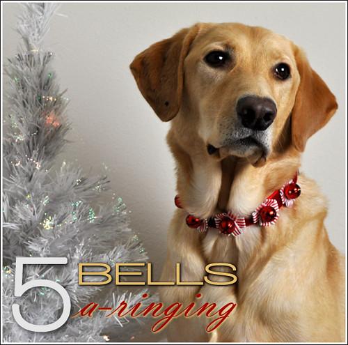 5 Bells A-Ringing