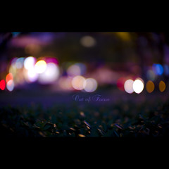 105/365 Out of Focus (brandonhuang) Tags: leica light color colour field night dark out lights focus shiny colorful dof bright bokeh colourful depth m9 oof brandonhuang