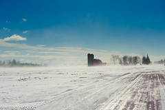 After the Blizzard (wgh3) Tags: usa snow wisconsin barn locations sceniclandscape centralwisconsin