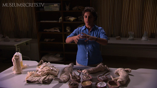 Salima Ikram shows a collection of fake animal mummies at Cairo's Egyptian Museum