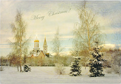 Merry Christmas ! (Arunas S) Tags: trees winter sky holiday snow tree texture church nature architecture clouds landscape newyear baltic fir birch merrychristmas spruce lithuania tranquillity palanga arunas sonydscr1 magicunicornverybest magicunicornmasterpiece