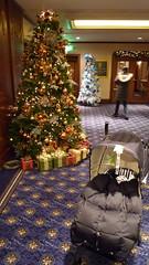 ウェスティンホテルのクリスマスツリー