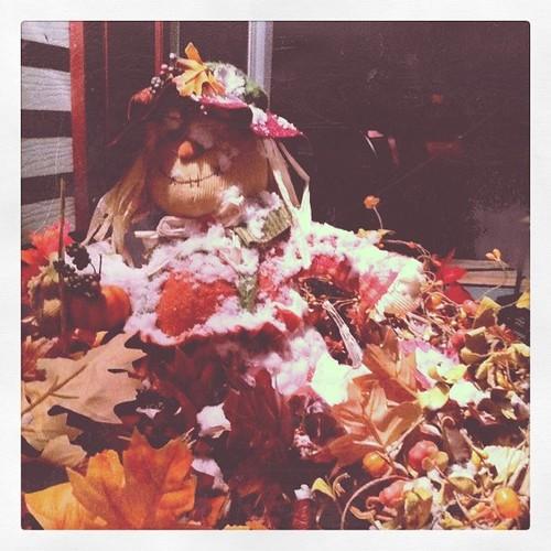 Snowy Scarecrow