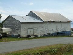 Old industrial fish packing shed, Sointula, B.C. (orbora78) Tags: bc shed sointula malcolmisland fifthwheeltraveltrailer