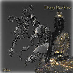 "Happy New Year (Mara ~earth light~) Tags: stilllife nature photoshop gold expression contemporaryart buddha creativecommons "" happynewyear namaste winterbeauty 2011 artdigital fantasticnature beautifultribute ""altrafotografia"" thedantecircle photographymypassion mara~earthlight~ lovelymotherearth"""