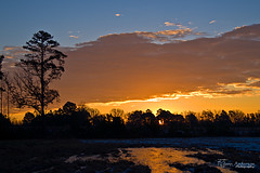 DEC_31_10-1 (Glenn Anderson.) Tags: tree clouds last sunrise reflected newyearseve 2010 a850