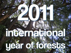 international year of forests (2011)