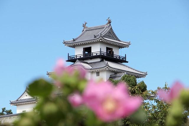 100925_102940_掛川城