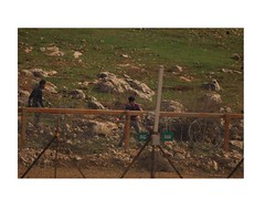 Photos Document Violence During Bil'in Riot This Weekend by Israel Defense Forces