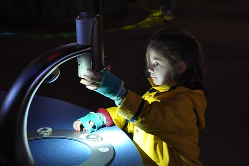 Using the polar bear exhibit microscope