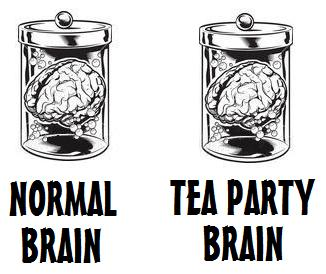Tea Party Brain