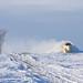 Snowplow victory!