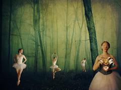 The dance.... (Suzette Photography) Tags: woman girl leaves fog forest dark dance woods dress mask surreal manipulation expressive tutu blinfolded ballerena
