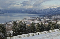 Take Time to Stop and Smell the Snow (Lori-B.) Tags: freshsnow winter vineyards fence farms naramata okanaganlake lake scatteredclouds onemilebeach winterscene agriculture cold beautiful pastoral penticton britishcolumbia