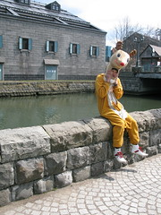 . . . (song.book) Tags: yellow japan wow hokkaido deer uomo phoebe adelaide hunter xxx sardine federica giappone citt ragazzo delle songbook daino renna otaro alligalli centore