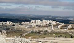 paysage en hiver (sabine-43) Tags: hauteloire