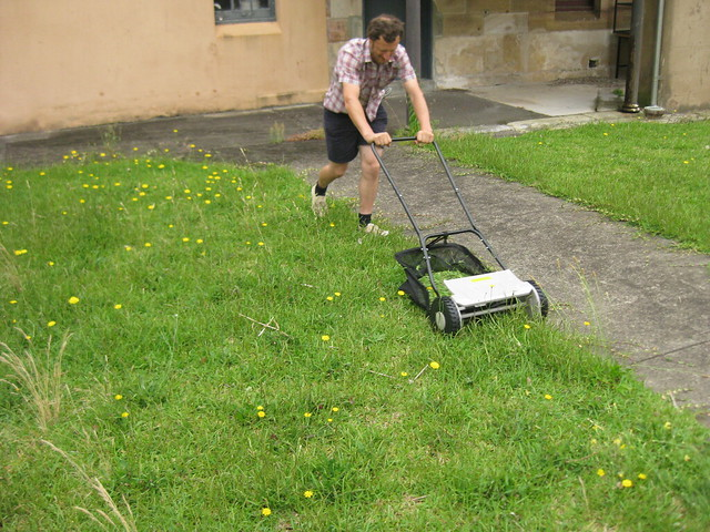 diego mowing