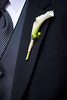 Simple White Calla Bout (Blue Bouquet) Tags: white callalily boutonniere photomementos