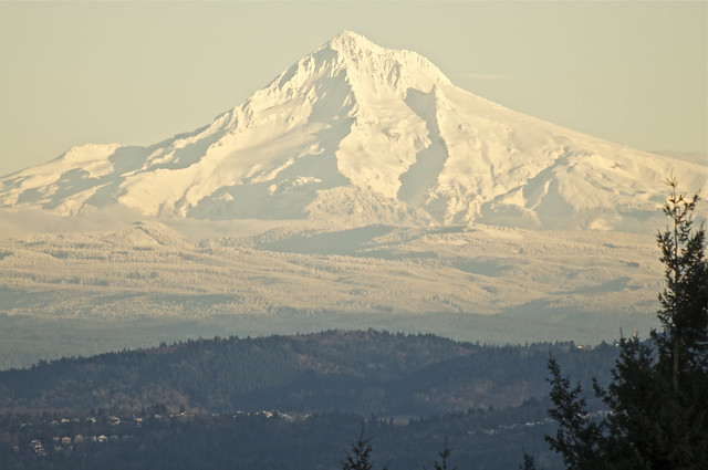 Mt. Hood from Council Crest