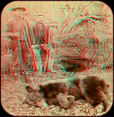 Bear Hunters of the North-West 1893 anaglyph 3D (depthandtime) Tags: bear old original vintage found outdoors stereoscopic 3d gun view unitedstates northwest antique rifle hunting 19thcentury anaglyph rifles stereo card stereovie