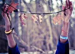 (tyreke.white) Tags: trees orange white leaves yellow forest hands nikon bokeh branches fingers tape string bracelets d5000