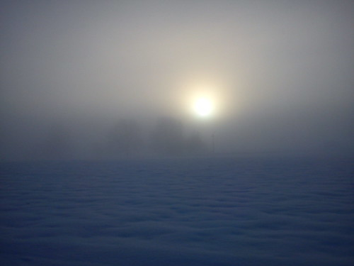 Misty day at Nordtorp, Sandared