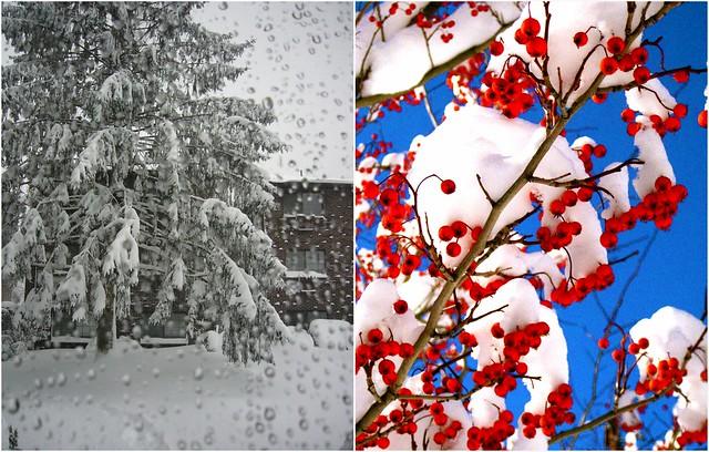 January Snows