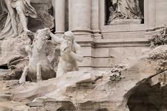 (Alice Barigelli) Tags: roma rome italy italia fontanaditrevi trevifountain fontana fountain sculpture sculture