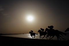 Sanlúcar de Barrameda (kanuas) Tags: carlosarribas colectivohiguera color kanuas sanlúcar agosto 2016 carreras caballos