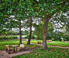 HBM - picnicking! (Darling Starlings Flying the Nest) Tags: llangatwglimekilns picnicarea benchs hbm benchmonday wales crickhowell trees autumn
