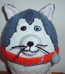 Husky (Impression-Knits) Tags: dog dogs strange fun weird knitting husky funny hats malamute novelty unusual knitted