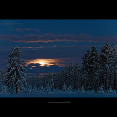 moonset in blue hour (stella-mia) Tags: morning blue winter moon snow norway forest bluehour moonset sn 70200mm 2011 canon5dmkii