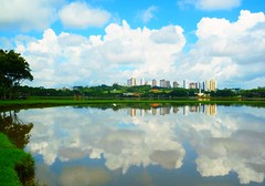 Clouds and city reflections (peggyhr) Tags: blue trees friends red brazil sky white lake green yellow skyline clouds buildings reflections niceshot pa curitiba lakeshore myflickrfavs bariguipark superphotographer natureplus peggyhr flickrbronzeaward heartawards allxpressus naturestyle 100commentgroup doubledragonawards photographerparadise artofimages tophonorofphotographerparadise dragonflyawards flickraward zensationalworld worldwidetravelogue mygearandme mygearandme1 nossasvidasnossomundoourlifeourworld avpa1maingroup naturespotofgoldlevel1 chariotsofartists level1photographyforrecreation p1220191ap 2011anythingofgoodtaste
