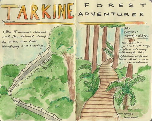 Tarkine forest adventure