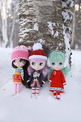 winter friends.