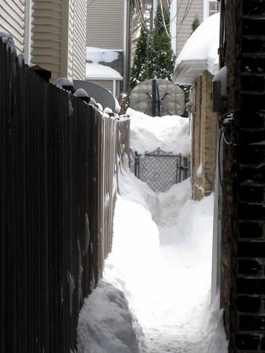 blizzard 104