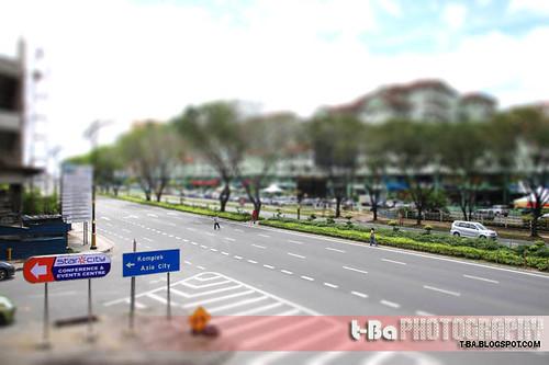 Road - Miniature