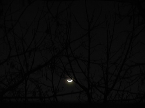 New Moon _ 1545