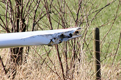 29 (pascalmarch) Tags: plane airplane dead death bc crash accident police ambulance valley cop mission rcmp emergency propeller bi charge firefighters fatal abbotsford chilliwack cesna medics raser collsion