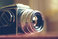 Hasselblad Sunday (bunbunlife) Tags: life camera portrait home zeiss lens still pentax hasselblad carl 500c dslr tamron zakka k200d