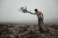Setting Roots in No Man's Land (cosmofobica) Tags: wood man tree fog river lost transformation surrealism surreal nomansland metamorphosis